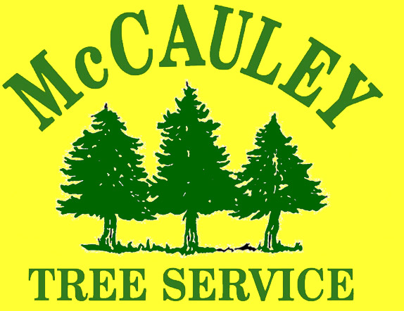 McCauley Tree & Landscaping
